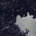 Nebelung (200x200)