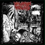 violation wound